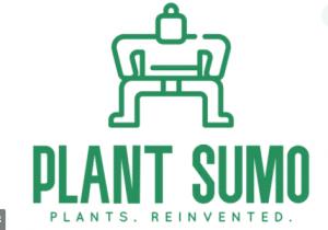 plant sumo